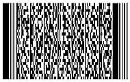 печать 2D кодов на товаре